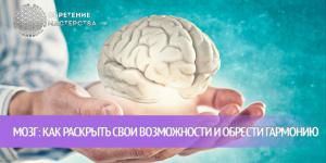 Мозг: как раскрыть свои возможности и обрести гармонию